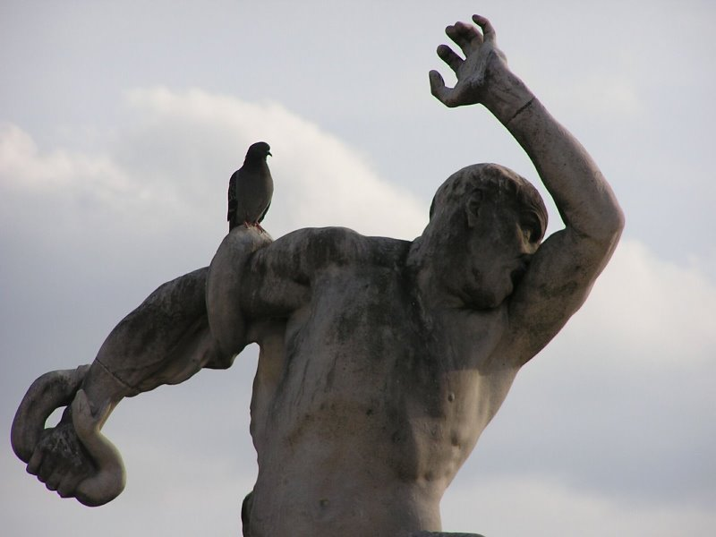 Statue gives pigeon crap online poker for mac real money